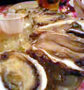 041204oyster