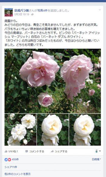 20160506_01